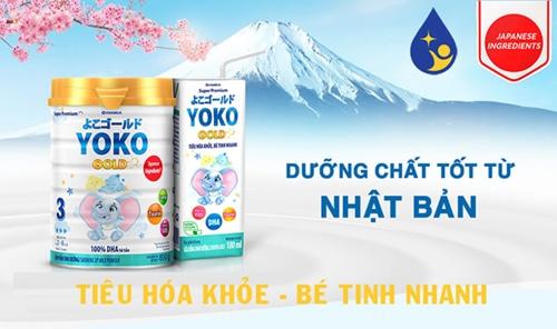 doi-net-ve-sua-yoko