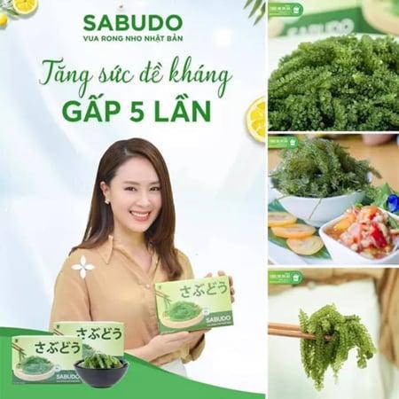 Sabudo là sản phẩm cực kỳ nổi bật